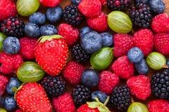 Berries Background macro, selective focus. Stock Image