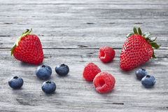 Berries On Wood Background. Mixed berries on a rustic wood background Royalty Free Stock Photos