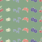 Berries (background). Ornament for the background ,made from the collection of various berries (currant, plum, blueberry, gooseberry Royalty Free Stock Photos