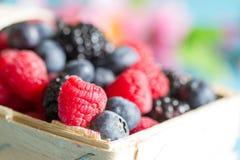 Berries background with raspberries, blueberries and blackberries Stock Photo
