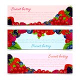 Berries banners set horizontal Royalty Free Stock Image