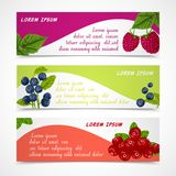 Berries banners set Stock Photo