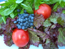 Berries Basil Lettuce Tomato. Fresh lettuce, tomatoes, blueberries, and basil from the Farmer's Market Royalty Free Stock Image