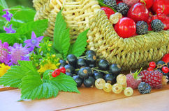 Berries in basket Stock Photography