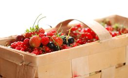 Berries in basket Stock Photos
