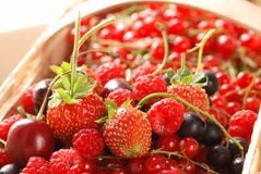 Berries in basket Royalty Free Stock Images