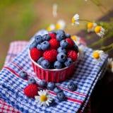 Berries berry raspberry blueberry Stock Photography