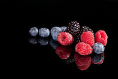 Berries on black background. Stock Images