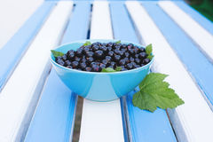 Berries of a black currant on a blue table Royalty Free Stock Photography
