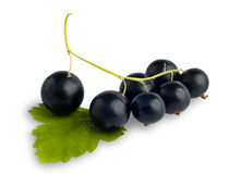 Berries of black currant on white Royalty Free Stock Photos