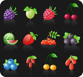 Berries black icon set. Stock Image