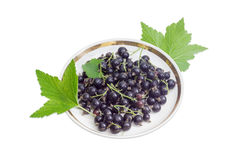 Berries of blackcurrant on saucer and leaves of a currant Royalty Free Stock Photos