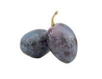 Berries blue grapes Stock Image