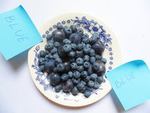 Berries of blueberries and plums on a white plate Stock Photography