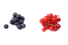 Berries: Blueberries And Redcurrant Royalty Free Stock Photography