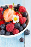 Berries in a bowl Stock Photography