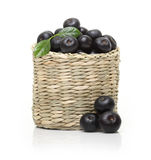 Berries in bowl isolated Stock Image