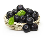 Berries in bowl isolated Stock Photo