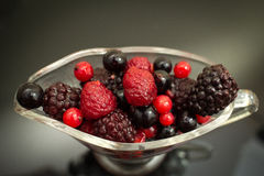 Berries. A bowl of tasty berries royalty free stock photo