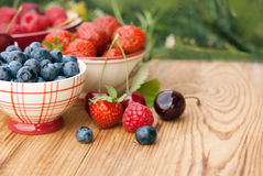 Berries in bowls Stock Photos