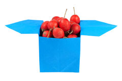 Berries in a box origami Stock Photos