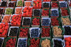Berries in boxes. All sorts of berries, on display in carton boxes at a French market Royalty Free Stock Image