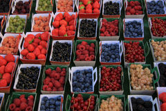Berries in boxes. All sorts of berries, on display in carton boxes at a French market Royalty Free Stock Photography