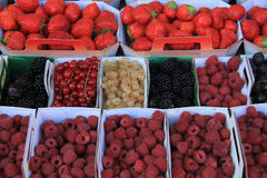 Berries in boxes. Blueberries, strawberries, rubus, red currant and raspberries, displayed in cardboard boxes Stock Image