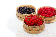 Berries with cereals Stock Images