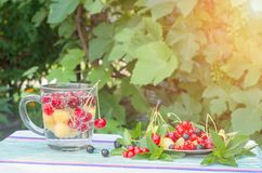 Berries cherries red and yellow in a glass with mineral water and on a plate. Royalty Free Stock Photo
