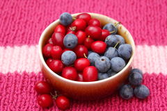 Berries and cherries Royalty Free Stock Photography
