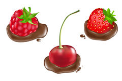 Berries In Chocolate. Vector Royalty Free Stock Photo