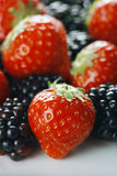 Berries close-up. Strawberries and blackberries close-up with selective focus - shot in studio with a 21 megapixel camera Stock Photography