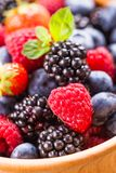 Berries close up Royalty Free Stock Photos