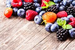 Berries close up Royalty Free Stock Image