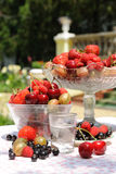 Berries with cocktail. stock images
