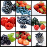 Berries Collage Stock Images