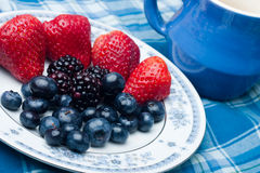 Berries Collection Stock Images