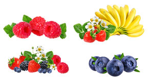 Berries collection isolated on white. Background Royalty Free Stock Photos