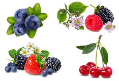 Berries collection isolated on white. Background Stock Photo