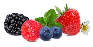 Berries collection. Raspberry,strawberry, blueberry, blackberry  isolated. On white Royalty Free Stock Photos