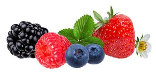 Berries collection. Raspberry,strawberry, blueberry, blackberry  isolated. On white Stock Photography