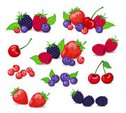Berries Collection. Berries Set Vector Illustration. Strawberry, Blackberry, Blueberry, Cherry, Raspberry, Red currant. Berries and their Combinations Set royalty free illustration