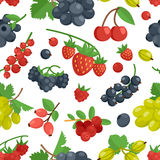 Berries Color Seamless Ornament Stock Photo