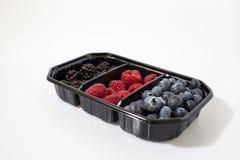 Berries composition, blackberries, rasberries and blueberries stock photos