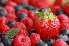 Berries with copy space. Focus on the strawberry, fruits in the background forming a copy space Stock Image