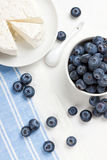 Berries and cottage cheese. Fresh ripe blueberries and some homemade cottage cheese Royalty Free Stock Photo