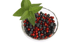 Berries of cowberry and whortleberry in a glass va Stock Photography