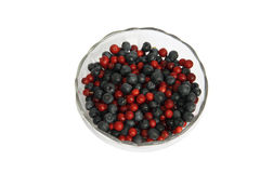 Berries cowberry and whortleberry in a glass vase Royalty Free Stock Photos