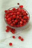 Berries cranberries, frosted, glass plate in front of a white linen cloth, close-up Royalty Free Stock Image